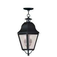 Livex Lighting Amwell 2 Light Outdoor Hanging Lantern in Black 2546-04