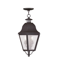 Amwell 2 Light 9 inch Bronze Outdoor Hanging Lantern
