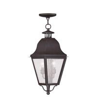 Livex 2546-07 Amwell 2 Light 9 inch Bronze Outdoor Hanging Lantern