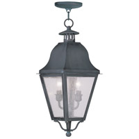 Livex Lighting Amwell 2 Light Outdoor Hanging Lantern in Charcoal 2546-61
