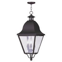 Livex Lighting Amwell 4 Light Outdoor Hanging Lantern in Bronze 2547-07
