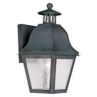 Livex Lighting Amwell 1 Light Outdoor Wall Lantern in Charcoal 2550-61