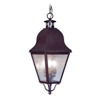 Livex Lighting Amwell 3 Light Outdoor Hanging Lantern in Bronze 2557-07