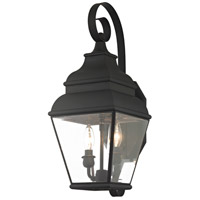 Livex 2591-04 Exeter 2 Light 22 inch Black Wall Lantern
