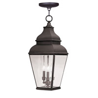 Livex 2597-07 Exeter 3 Light 10 inch Bronze Outdoor Chain Lantern