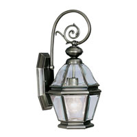 Livex Lighting Bradford 1 Light Outdoor Wall Lantern in Vintage Pewter 2630-29
