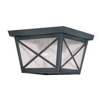 Livex Lighting Montgomery 2 Light Outdoor Ceiling Mount in Charcoal 2679-61 photo thumbnail