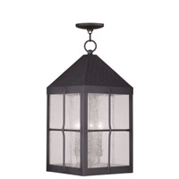 Livex Lighting Brighton 4 Light Outdoor Hanging Lantern in Bronze 2687-07