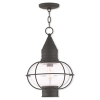 Livex Lighting Newburyport 1 Light Outdoor Chain Lantern in Black 26906-04