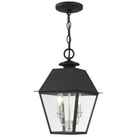 Livex 27217-04 Mansfield 2 Light 9 inch Black Outdoor Pendant Lantern