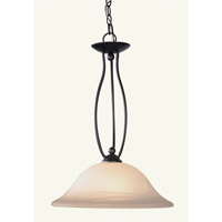 Livex Lighting Home Basics 1 Light Pendant in Bronze 4162-07