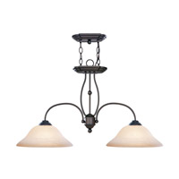 Livex Lighting Home Basics 2 Light Island Light in Bronze 4172-07