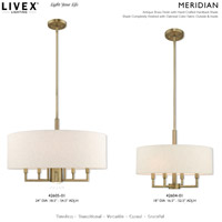Livex 42605-01 Meridian 6 Light 24 inch Antique Brass Pendant Chandelier Ceiling Light alternative photo thumbnail