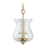 Livex Lighting Home Basics 2 Light Pendant/Ceiling Mount in Polished Brass 4393-02