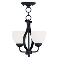 Livex Lighting Brookside 2 Light Pendant/Ceiling Mount in Black 4762-04