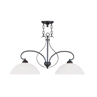 Livex Lighting Brookside 2 Light Island Light in Olde Bronze 4782-67