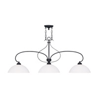 Livex Lighting Brookside 3 Light Island Light in Black 4783-04