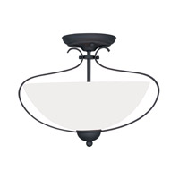Livex Lighting Brookside 2 Light Ceiling Mount in Black 4798-04 photo thumbnail