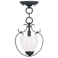 Livex Lighting Brookside 1 Light Pendant/Ceiling Mount in Black 4800-04
