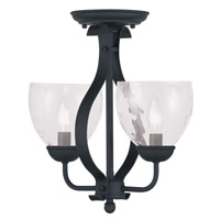 Livex Lighting Brookside 2 Light Pendant/Ceiling Mount in Black 4804-04 alternative photo thumbnail