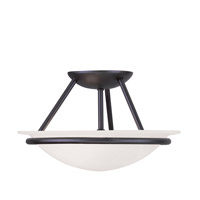 Livex Lighting Newburgh 2 Light Ceiling Mount in Black 4823-04