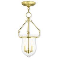 Livex 50294-02 Canterbury 2 Light 10 inch Polished Brass Pendant Ceiling Light