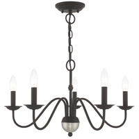 Livex 52165-04 Windsor 5 Light 24 inch Black Chandelier Ceiling Light