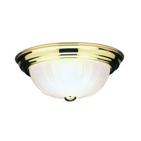 Home Basics 2 Light 13 inch Polished Brass Ceiling Mount Ceiling Light in Frosted Melon