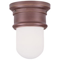 Signature 1 Light 6 inch Vintage Bronze Ceiling Mount Ceiling Light