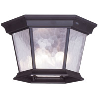 Livex 7510-07 Hamilton 3 Light 11 inch Bronze Outdoor Ceiling Mount in Clear Water