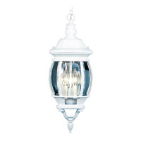 Livex Lighting Frontenac 3 Light Outdoor Hanging Lantern in White 7527-03