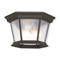 Hamilton 3 Light 11 inch Textured Black Outdoor Ceiling Mount