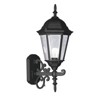 Hamilton 1 Light 20 inch Black Outdoor Wall Lantern in Clear Beveled