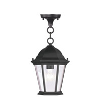 Livex 7559-04 Hamilton 1 Light 8 inch Black Outdoor Hanging Lantern in Clear Beveled photo thumbnail