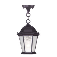 Hamilton 1 Light 8 inch Bronze Outdoor Hanging Lantern in Clear Water