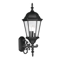 Hamilton 3 Light 24 inch Black Outdoor Wall Lantern in Clear Beveled