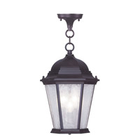 Livex Hamilton 3 Light Outdoor Chain Hang in Bronze 7564-07 photo thumbnail
