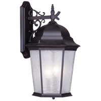 Livex 7565-07 Hamilton 3 Light 23 inch Bronze Outdoor Wall Lantern in Clear Water