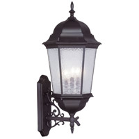 Hamilton 3 Light 30 inch Bronze Outdoor Wall Lantern in Clear Water