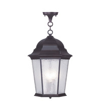 Livex Lighting Hamilton 3 Light Outdoor Hanging Lantern in Bronze 7569-07