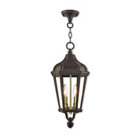 Morgan 2 Light 9 inch Bronze Outdoor Pendant Lantern