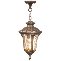 Oxford 1 Light 10 inch Moroccan Gold Outdoor Hanging Lantern