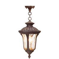 Livex 7654-58 Oxford 1 Light 10 inch Imperial Bronze Outdoor Hanging Lantern