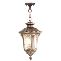 Oxford 1 Light 11 inch Moroccan Gold Outdoor Hanging Lantern
