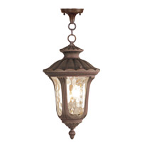 Livex 7658-58 Oxford 1 Light 11 inch Imperial Bronze Outdoor Hanging Lantern
