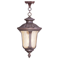 Livex Lighting Oxford 3 Light Outdoor Hanging Lantern in Imperial Bronze 7665-58