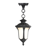 Livex Lighting Oxford 1 Light Outdoor Hanging Lantern in Black 7668-04