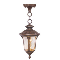 Livex 7668-50 Oxford 1 Light 7 inch Moroccan Gold Outdoor Hanging Lantern in Hand Blown Light Amber Water photo thumbnail