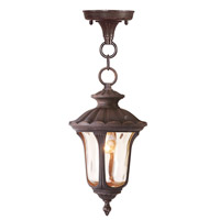 Livex Lighting Oxford 1 Light Outdoor Hanging Lantern in Imperial Bronze 7668-58