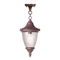 Livex Lighting Townsend 1 Light Outdoor Hanging Lantern in Imperial Bronze 7786-58